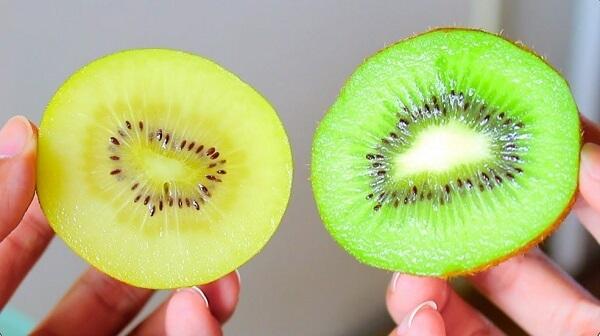 Hình ảnh quả kiwi xanh và quả kiwi vàng