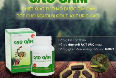 Cách dùng Cao Gắm cho bệnh gout