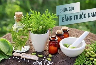 Cách chữa bệnh gout hiệu quả bằng 10 loại thảo dược tại nhà