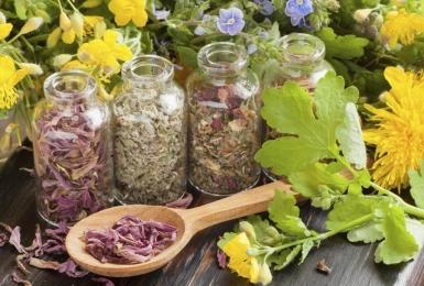 Cách chữa bệnh gout hiệu quả bằng 15 loại thảo dược tại nhà