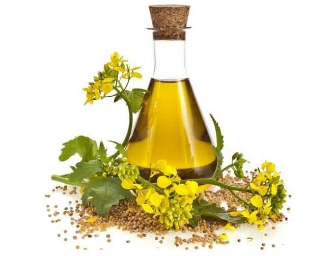 Tác dụng của dầu hạt cải đôi với sức khỏe