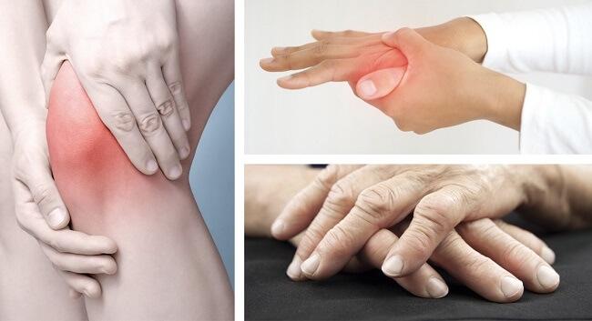 Cây hy thiêm chữa bệnh xương khớp